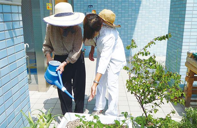 園芸療法の実施